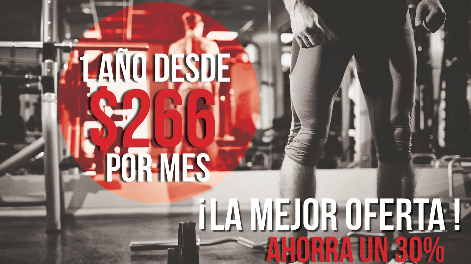 Bull Fit Tepa Fitness & Gym - photo