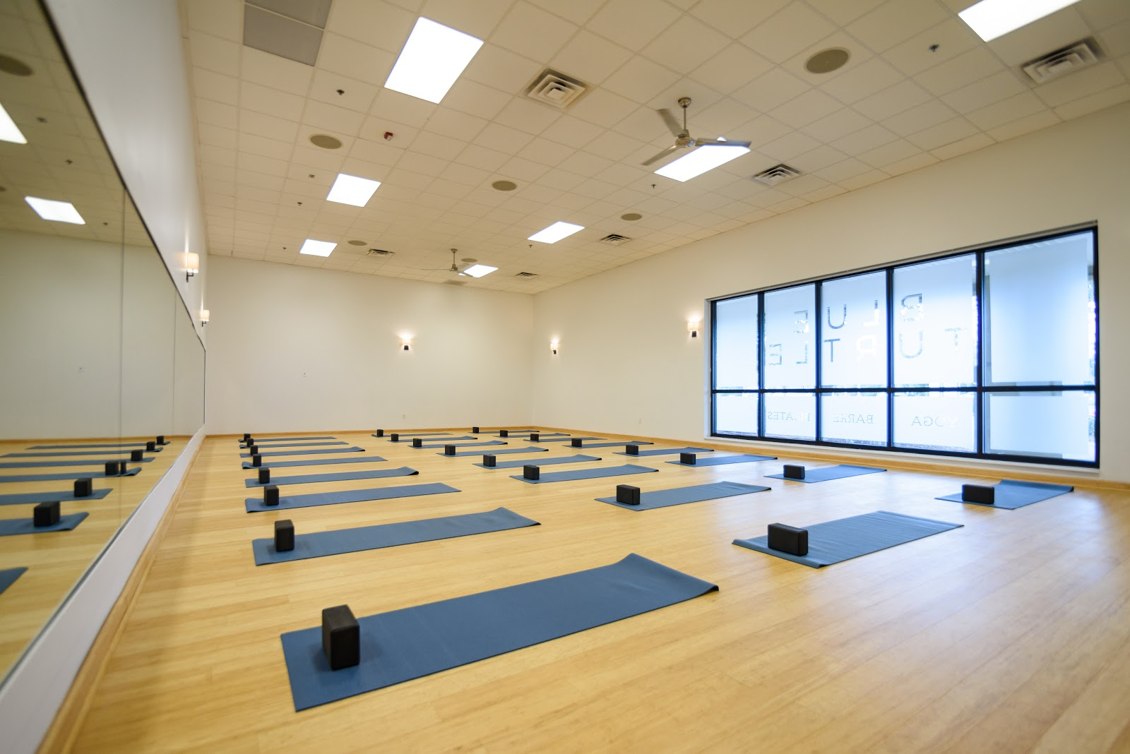 Pivotal Fitness (formerly Eco Fitness) - photo