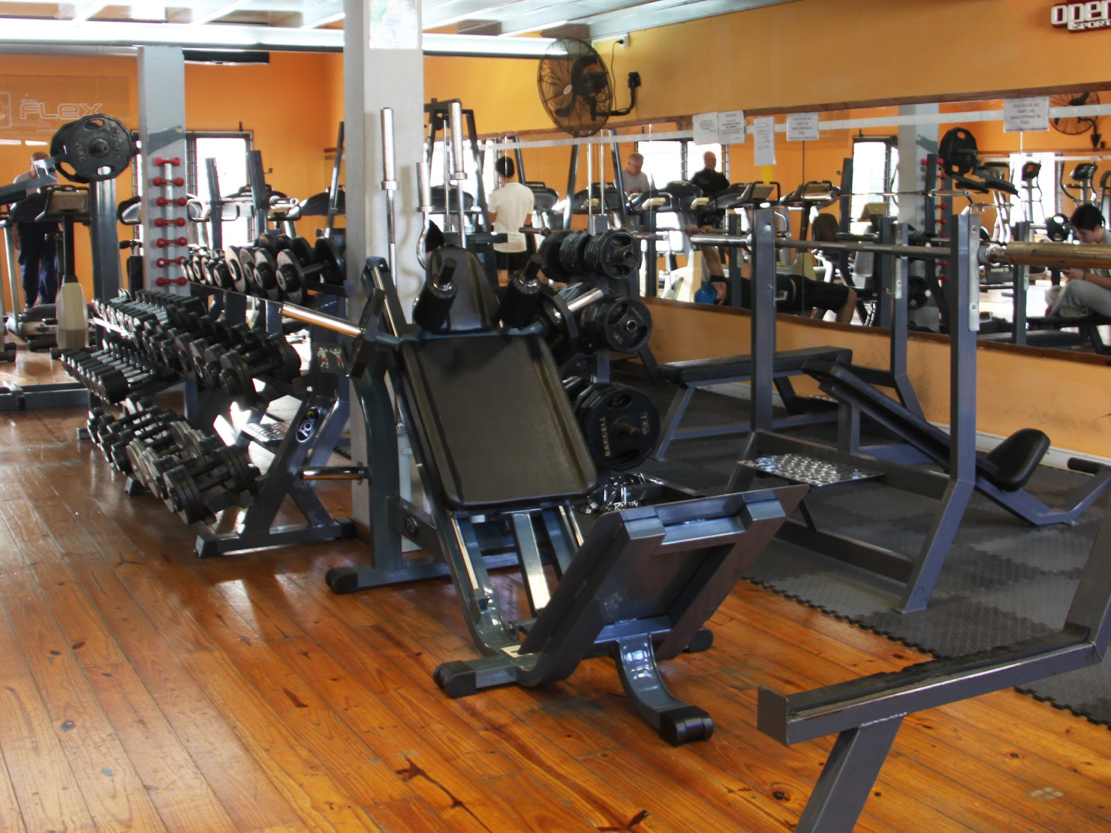 Gimnasio Flex - photo
