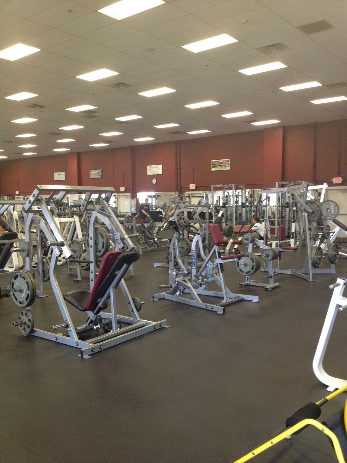 Fitness 1 Gym - photo