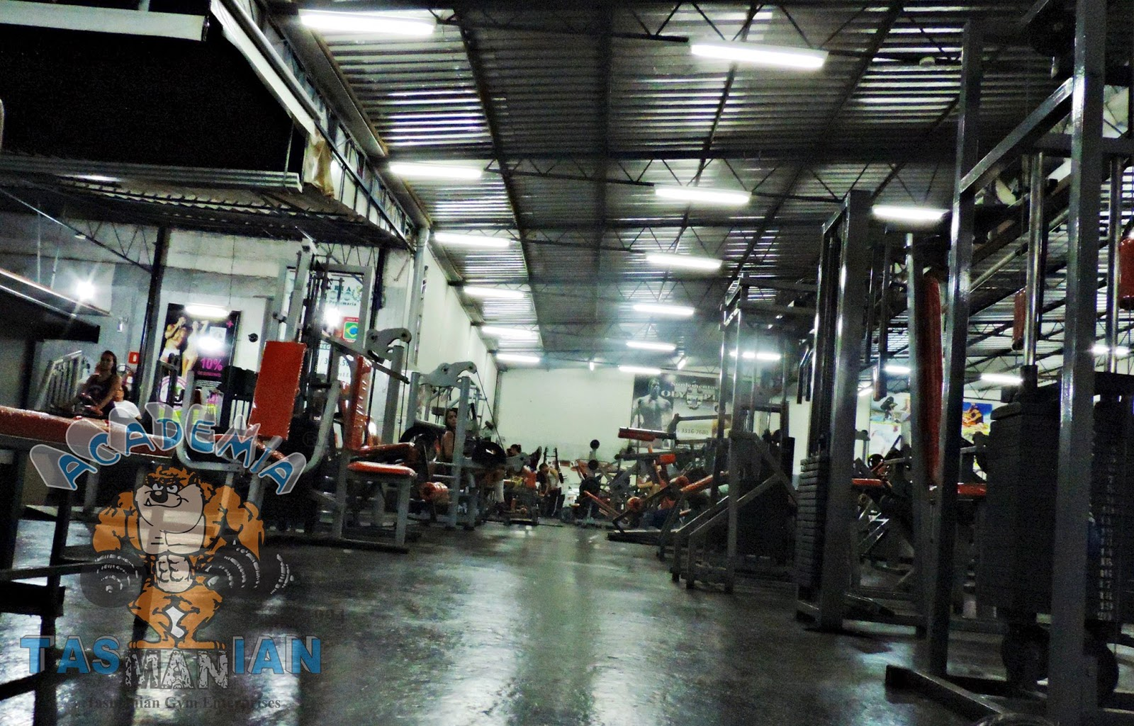 Academia Tasmanian Gym - photo