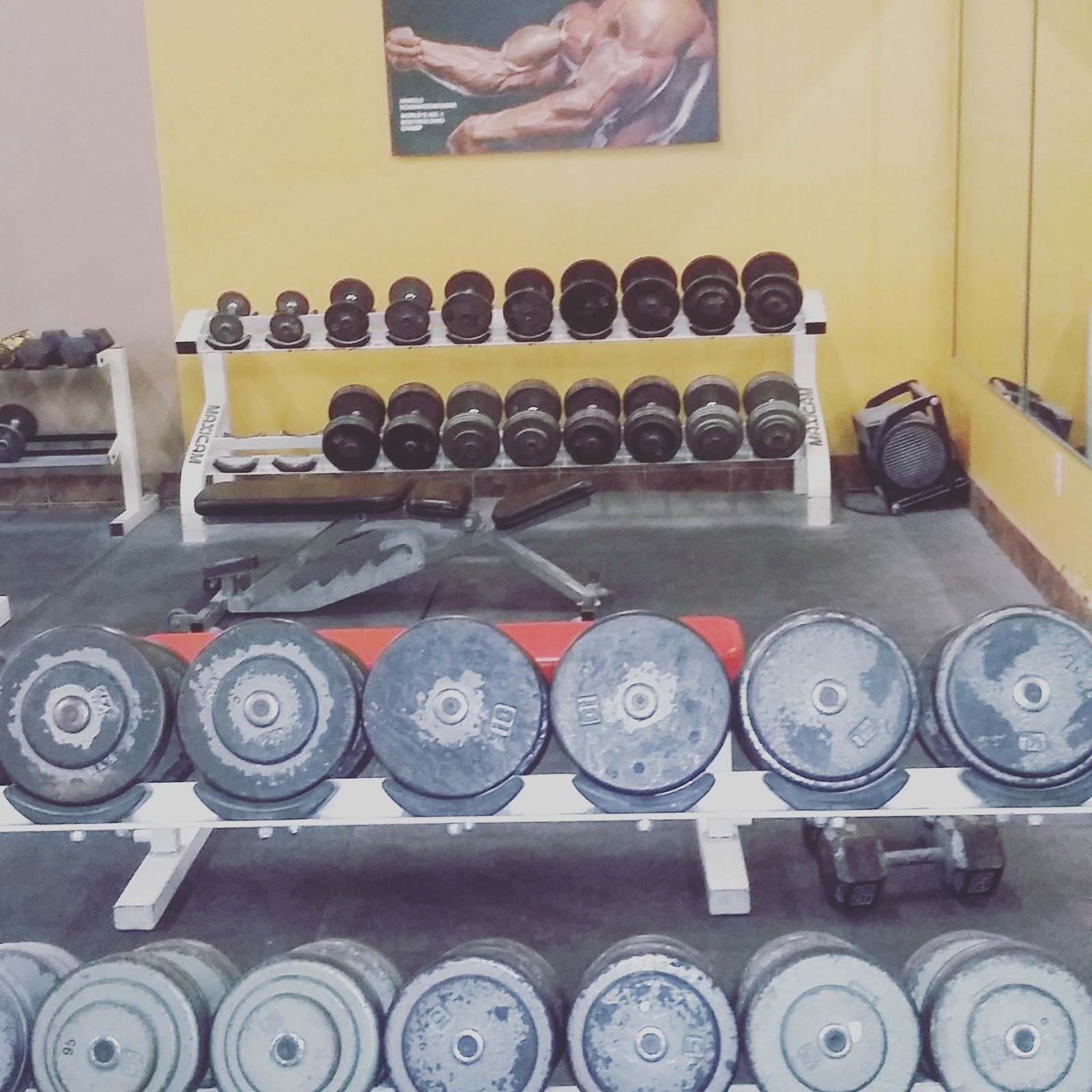 Stronghold Gym - photo