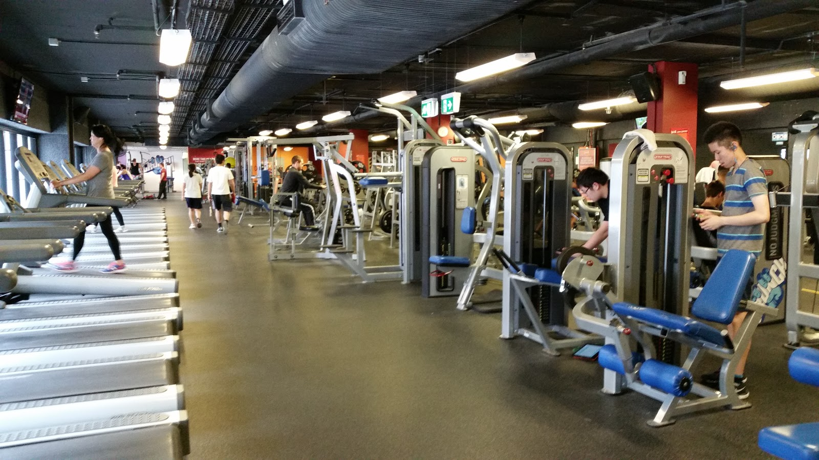 Crunch Fitness Chatswood - photo