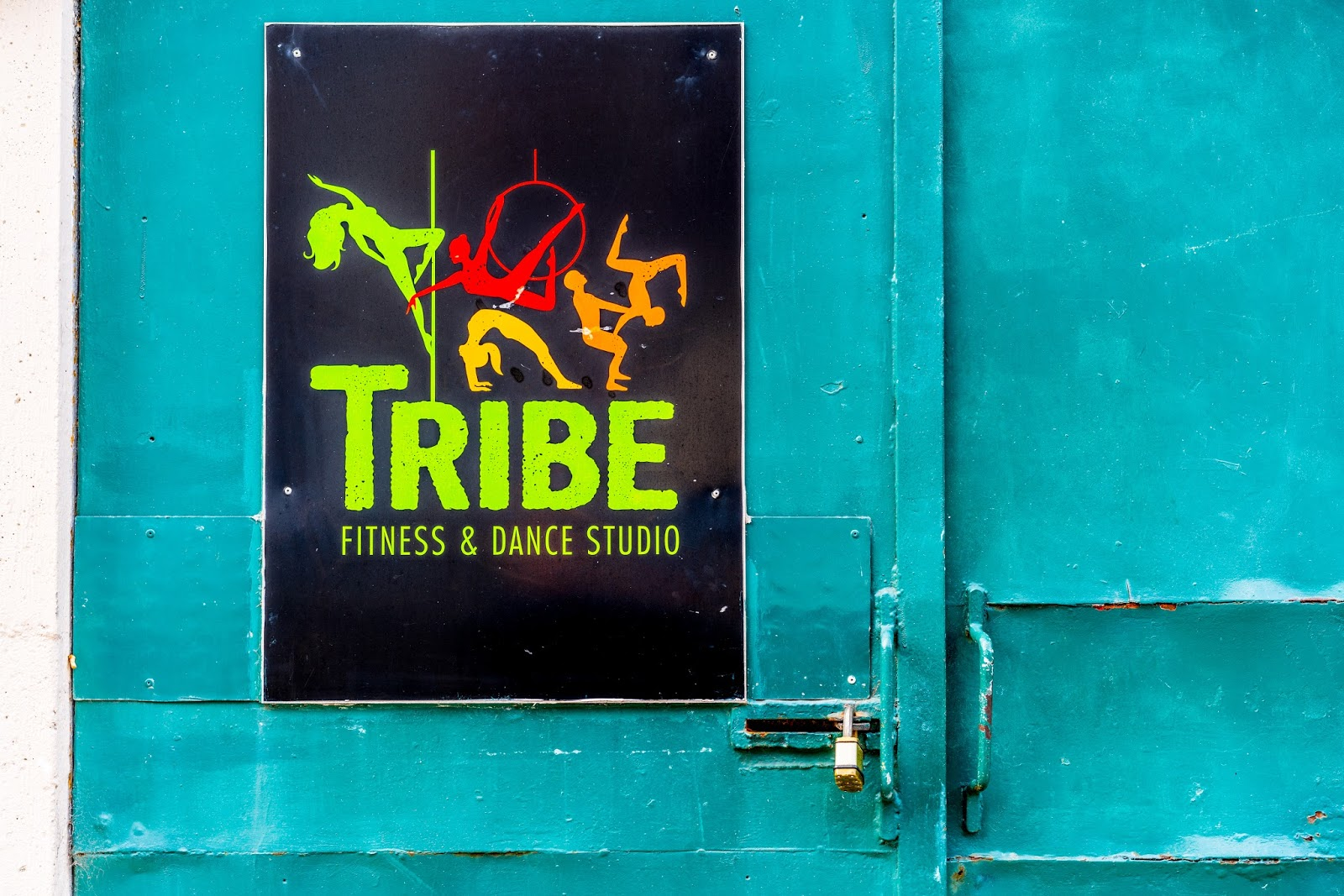 TRIBE Fitness and Dance Studio - photo