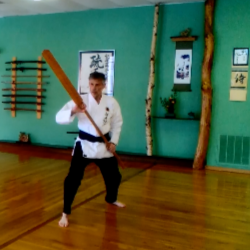 Ryu Shu Kan: Japanese Martial Arts Center - photo