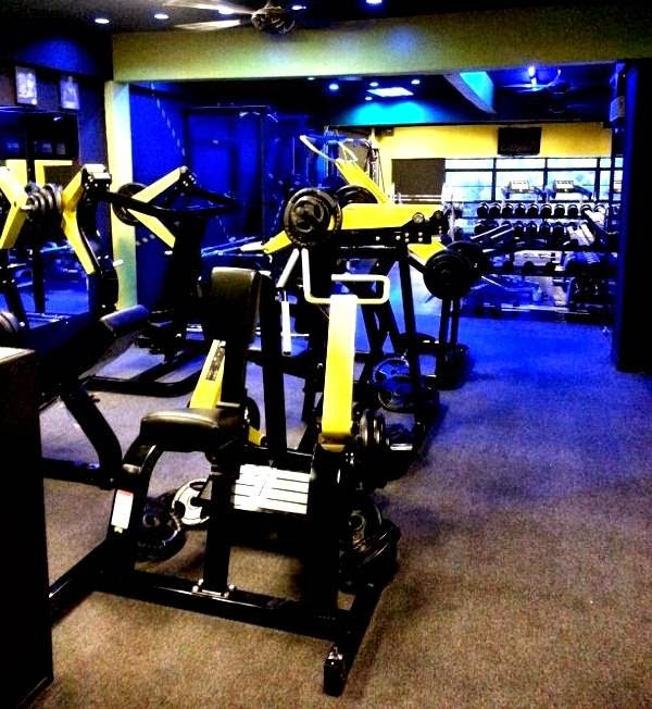 Muscle Brothers Gym - photo