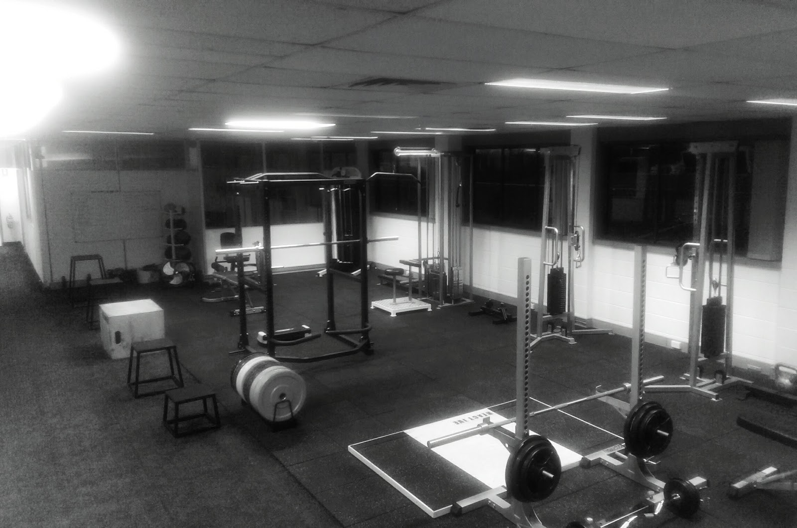 ReActive Injury Rehabilitation and High Performance Centre - photo
