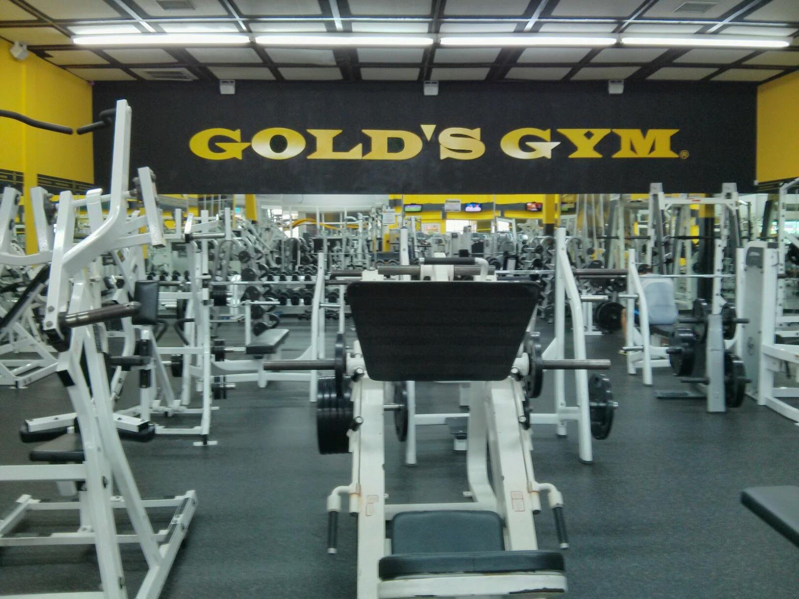 Gold's Gym Independencia - photo