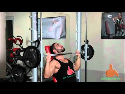 Seated Smith Machine presses